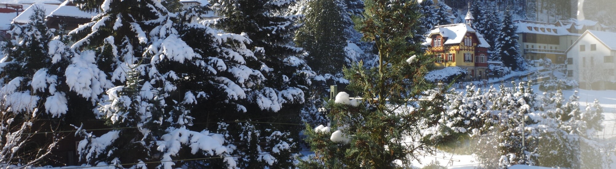 Oberrathen im Schnee