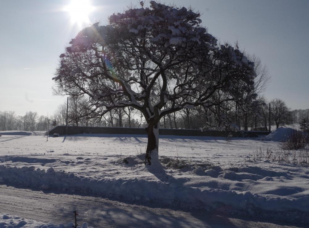 Winter vor dem Landhaus Weißig