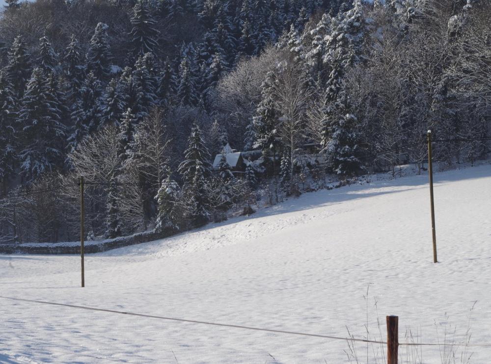 Winterbild Oberrathen 2