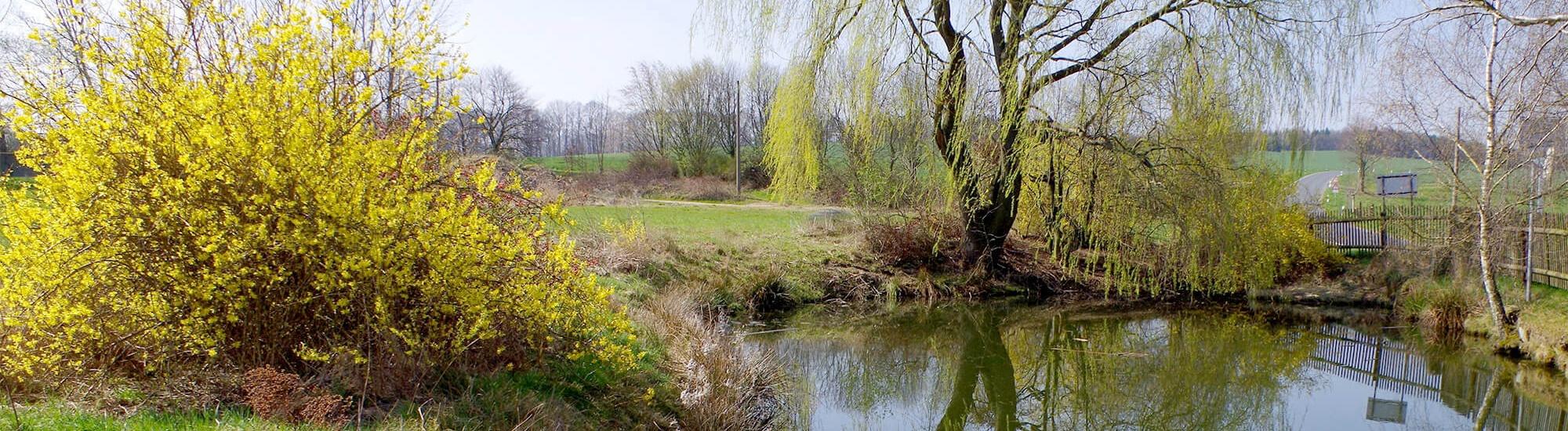 Ferienwohnung-Weißig-Teich